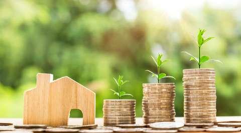 Talous: rahakasasta kasvaa taimia ja pieni talo