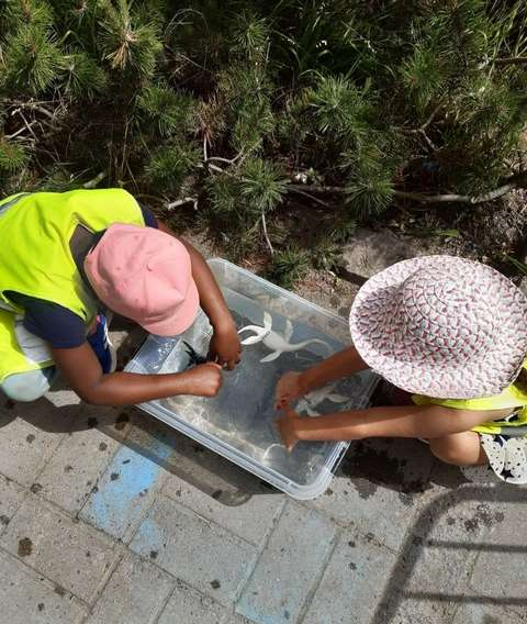 Lapset maalaamassa pihalla kesäpäivänä.