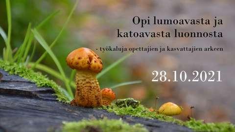 Webinaarin mainoskuvassa on pieni kellanruskea sieni sammaleisella lahopuulla.